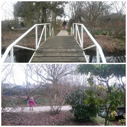 bezoek een plantentuin / kwekerij