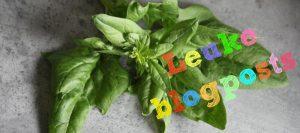 leuke blogs om te lezen