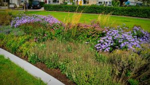 Noordhoven tuin