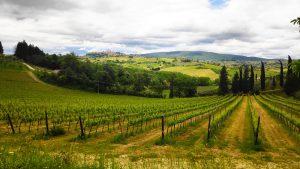 Toscane Italië