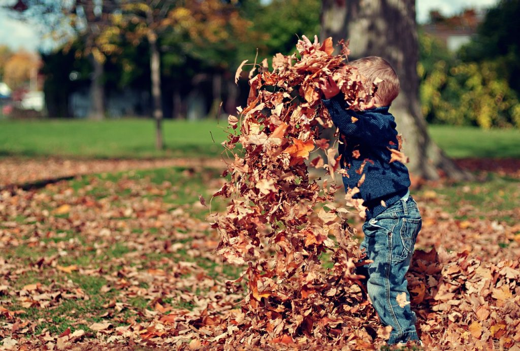 herfst knutselen / leuke dingen met kinderen in de herfst
