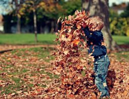 herfst knutselen / Ik heb zin in wat fijne quality time met de kids. De herfstvakantie komt er ook weer aan. Wat zijn leuke dingen met kinderen in de herfst die ik kan doen