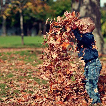 Herfst knutselen voor kids (tips met spulletjes uit je huis of tuin)