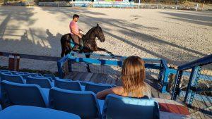 paardendingen voor paardenmeisjes