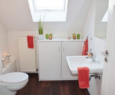 toilet duurzaam