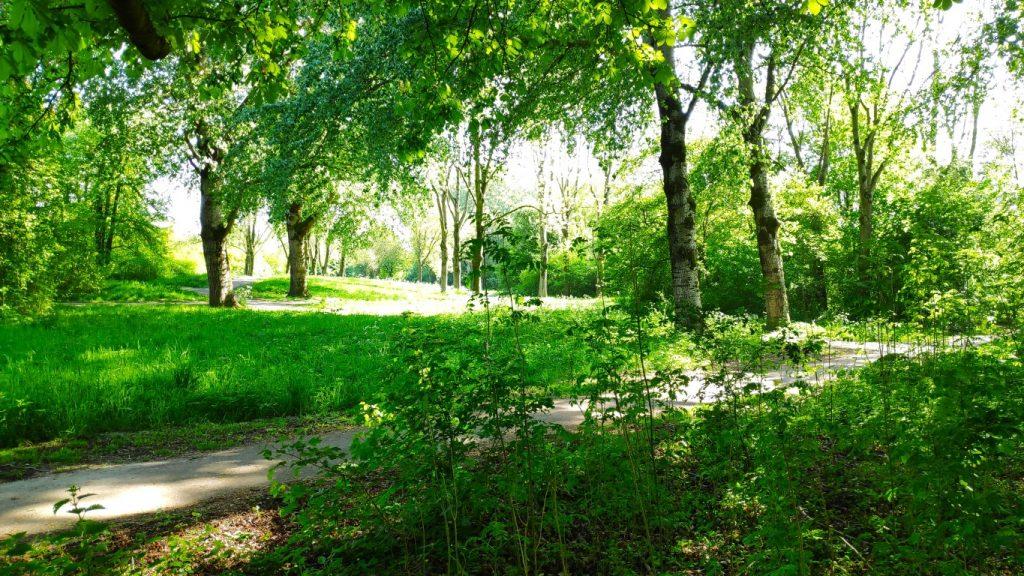 Meerpolder - parken in Zoetermeer