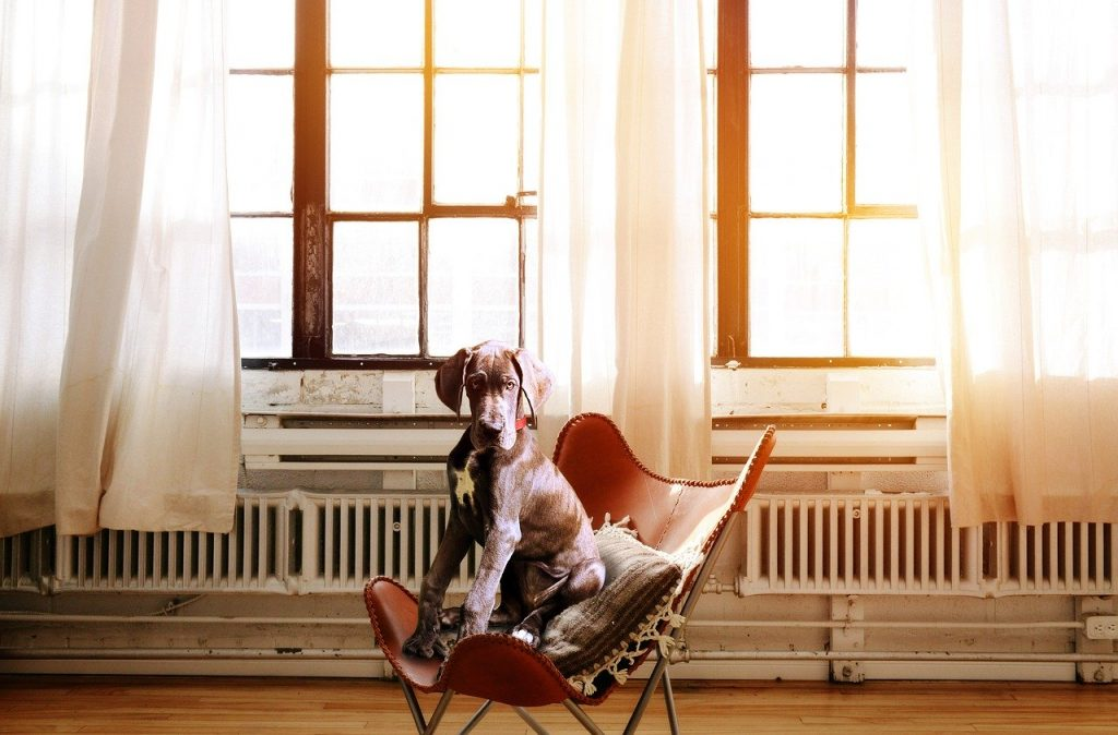 Kunstzinnige inspiratie voor mooie radiator verwarming in huis*