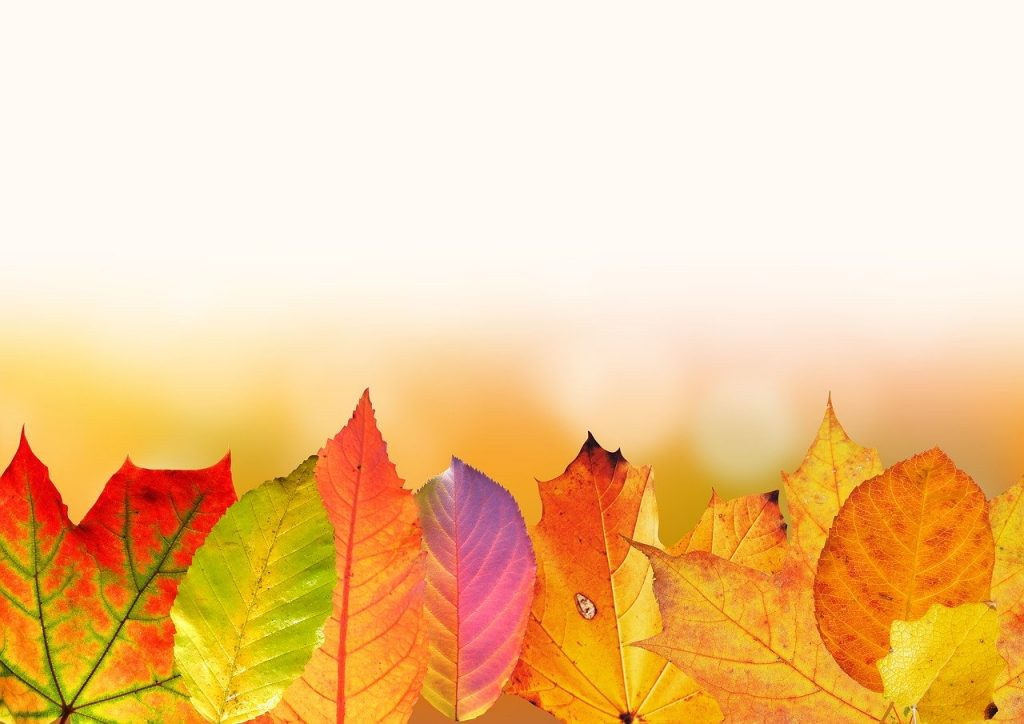Herfst knutselen voor kids, herfst tinten
