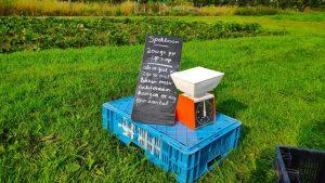 gezamenlijke moestuin in Zoeterwoude www.mamasjungle.nl