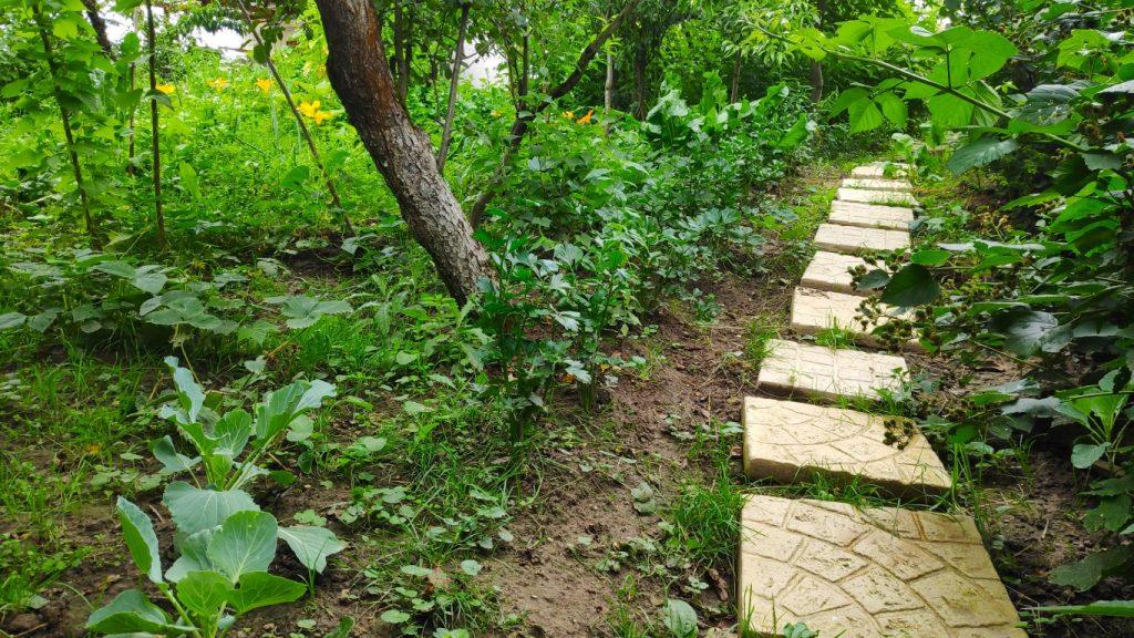 knusse groene zithoekjes in de tuin